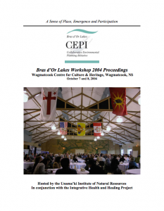 2004-10-07-cepi-workshop-proceedings-pdf